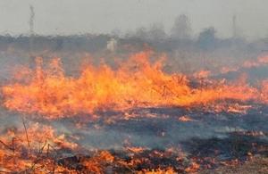 Пожар оставил жителей Херсонщины без воды