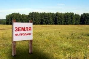 Николаевский горсовет незаконно передал фирме земельный участок стоимостью 219 миллионов гривен
