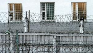 По «Закону Савченко» 11 осужденных из Снигиревской исправительной колонии вышли на свободу