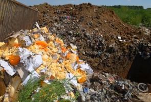 В России накануне Пасхи уничтожили 26 тонн деликатесов из ЕС