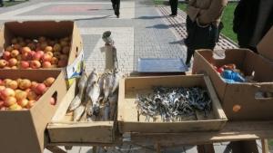 У здания Херсонского горсовета предприниматели устроили «перформанс», протестуя против запрета стихийной торговли