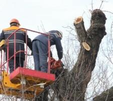 В Николаеве бойцы ГВГСО спасали от потопа детский сад