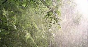 Николаевская ГАИ предупреждает водителей об осторожности на дорогах во время сильных ливней и гроз