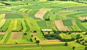 В Николаевской области дополнительно зарегистрировали почти 200 га земли для участников АТО