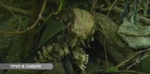Иностранец нашел в центре Одессы тело человека, погибшего в прошлом году