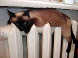 Тепло в дома Николаева дадут со дня на день - Департамент ЖКХ