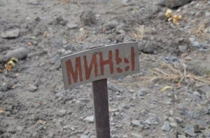 Весной начнется процесс разминирования на Донбассе