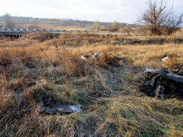 В сети появились фото с места падения николаевского штурмовика СУ-25 под Запорожьем