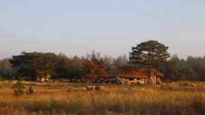 В Херсонской области открыли экодеревню