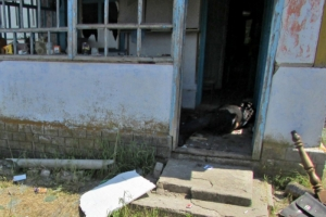 В Херсонской области погибли три человека: играли с гранатой Ф-1
