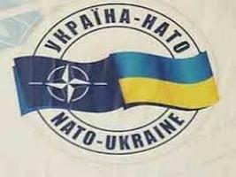 По инициативе «Батькивщины»» в день парламентских выборов может пройти референдум по вступлению Украины в НАТО