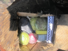 На Херсонщине в «зону» хотели передать запрещенные предметы, спрятав их в… бревно