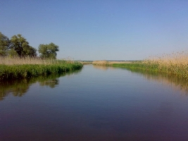 Руководство Одесского экологического университета обвинили в участии к захвату заповедных земель
