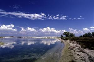Депутаты считают, что «Дельта-лоцман» может превратить лиман в болото