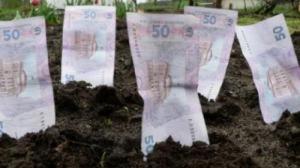 В Николаеве злостными неплательщиками за землю оказались родственники депутатов и криминальных авторитетов
