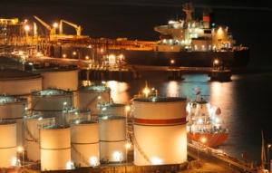 В Николаеве портовый терминал стоимостью 100 млн. долларов  хочет построить компания с уставным фондом 500 тыс. грн.