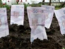 Николаевские арендаторы земли задолжали городу  рекордную сумму – более 15 млн. грн.