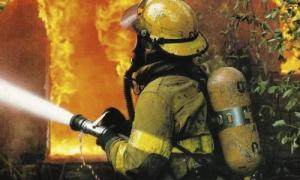 Николаевским пожарным ночью пришлось тушить два автомобиля