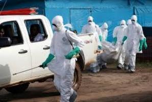 В ООН утверждают, что смогут взять под контроль вирус Эболы только в течение трех месяцев