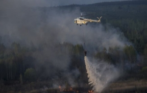 Пожар под Чернобылем продолжают тушить