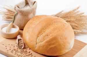 Херсонщина может остаться без хлеба из-за аномально влажного лета