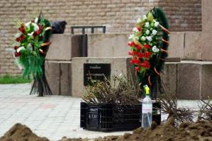 В Херсоне высадили сто кустов роз по случаю 100-летия геноцида армян