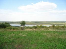 На Николаевщине из-за злоупотреблений чиновников незаконно отданы в аренду земли стоимостью 165 млн.грн.