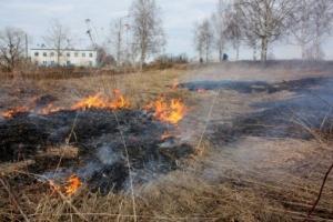 Жители Одесской области нашли труп женщины на месте полевого пожара